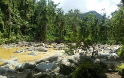 El Yunque Nationalpark.jpg